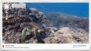Google Maps en el fondo marino